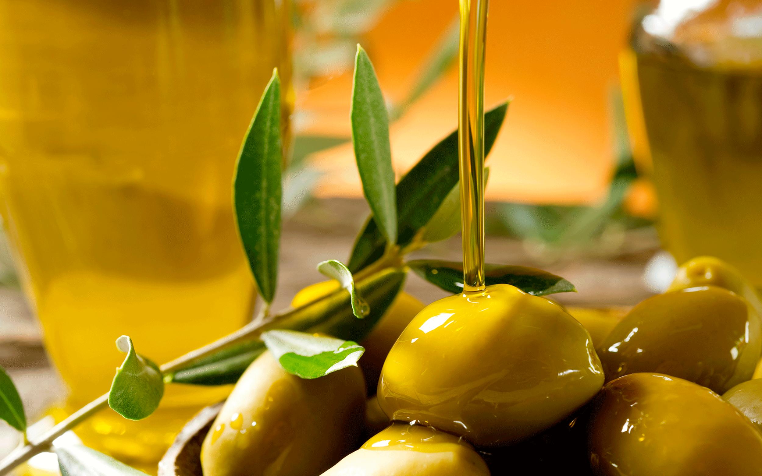 Conocer para Valorar el aceite de oliva