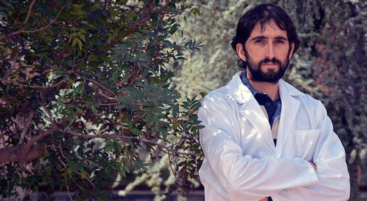 Premiado un estudio sobre repercusiones del clima en el olivo