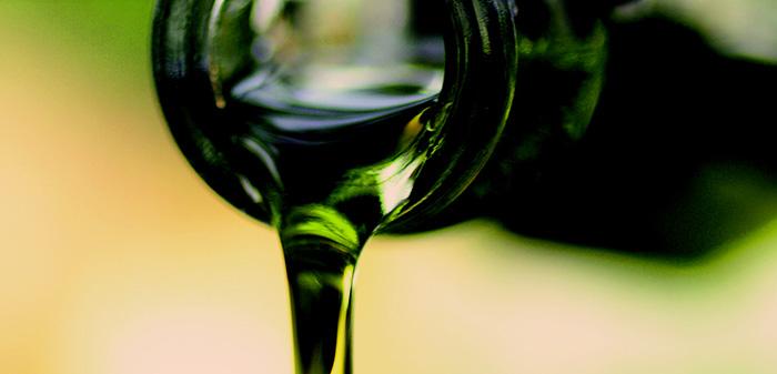 España, una vez más depósito mundial de aceite de oliva