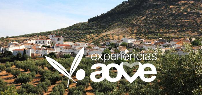 Descubre las Experiencias del AOVE 2017 con la nueva campaña de recogida