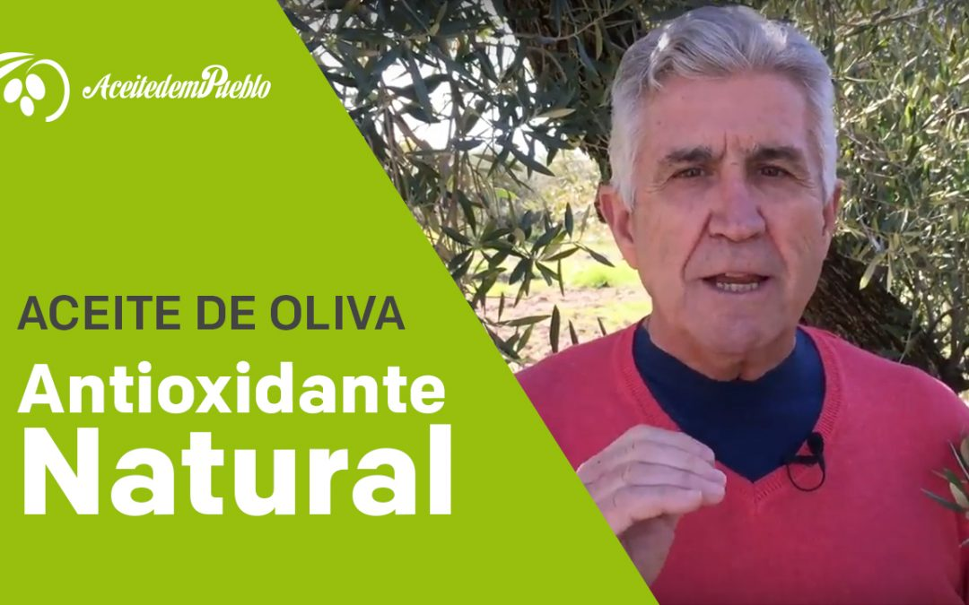 Antioxidante Natural el Aceite de oliva «Video»