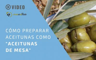 Cómo preparar las aceitunas como «aceitunas de mesa» | Cómo aliñar las aceitunas para aperitivo